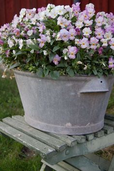 pansies in a galvanized can. how simple, yet how pretty! Christina would do this in her Brooklyn garden. Container Flowers, Container Plants, Container Gardening, Love Flowers, Beautiful Flowers, Simply Beautiful, Purple Flowers, Deco Floral, Plantar