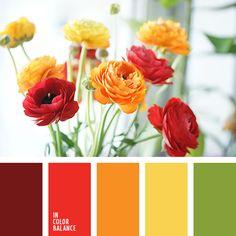 amarillo, amarillo fuerte, anaranjado, burdeos, colores primaverales, escarlata, paleta primaveral, rojo, rojo ranunculus, verde.