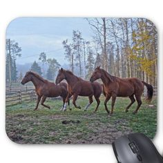 Equine Horse-lover's Photo Gift Mousepads