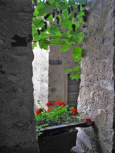 Antiche pietre by Nivea_, via Flickr