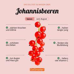 Das solltest du über Johannisbeeren wissen | eatsmarter.de #johannisbeeren #beeren #infografik #ernährung