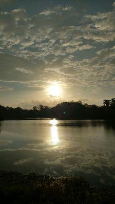 Sunrise Conservatory Park