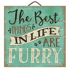 Highland Woodcrafters Wood Sign-The Best Things in Life are Furry - Dog - Cat - Pet Cat Signs, Wood Signs, Animal Signs, Pallet Signs, Crazy Cat Lady, Crazy Cats, Shabby Chic Wall Decor, Videos Tumblr, Dog Quotes