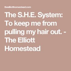 The S.H.E. System: To keep me from pulling my hair out. - The Elliott Homestead