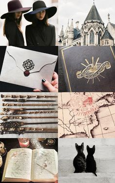 Harry Potter Aesthetics — Ilvermorny School of Witchcraft and Wizardry. Rowena Ravenclaw Diadem, Slytherin, Harry Potter Fandom, Harry Potter World, Severus Rogue, Nerd, Harry Potter Aesthetic, Fantastic Beasts And Where, Witch Aesthetic