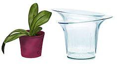 Piscina naturale: info sul mantenimento dell'equilibrio della biopiscina. La piscina biologica non contiene cloro e la sua pulizia è affidata alle piante.