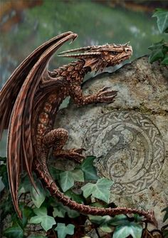 There be dragons among us!