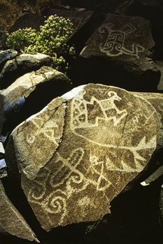 Mimbres style american rock art