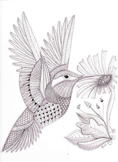Hummingbird Animal Coloring Pages. tangled hummingbird  My Tangled Adventures pictures to print for free coloring