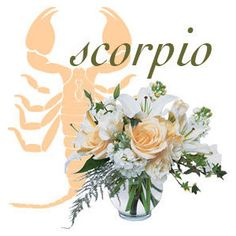 Nice Scorpio Poster for Zorpia Scorpio Traits, Scorpio Girl, Scorpio Horoscope, Astrology, Horoscopes, Scorpio Images, Love Forecast, White Flowers, Romantic