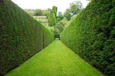 peaceful & meditative space; The Marqueyssac garden, France