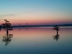 Dawn on Lake Chicot. August 2012