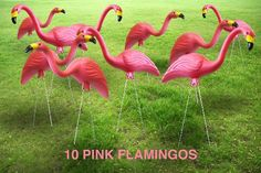 Garden Plast Pink Flamingos 10Pack ** Find out more about the great product at the image link.