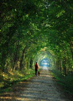 Katy Trail In Missouri