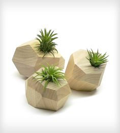 Faceted Trio | Home Decor | Roots in Rust | Scoutmob Shoppe | Product Detail