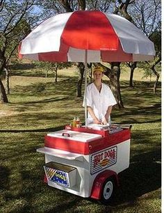 Carrito de hot dog brasileño  IMPORTANTE: NOSOTROS ESTAMOS UBICADOS EN BRA ..  http://santiago-city-2.evisos.cl/carrito-de-hot-dog-brasileno-id-590230