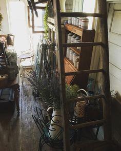 南フランスで出会った古い大きなはしご天井にぶら下げたり壁に立てかけたり  #deco #rustic #brocante #antique #interior #vintage  #shabbychic #oldstyle #antiques #frenchstyle #decoration #ancien #antiqueshop #lovelyvintage #homedeco #shabby #retro #gardening #ladder #échelle #antiquedesign#canister #lavender #ラココット #enamel #古道具 #ブロカント #アンティーク