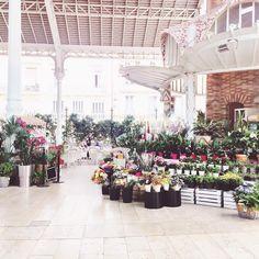71 Best Les Fleurs Images In 2018 Beautiful Flowers Nice Asses