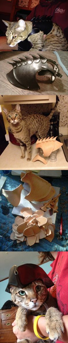 funny-cat-costume-leather-armor-outfit