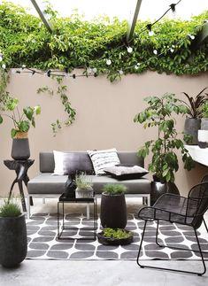 1 Room, 4 Looks: Rustic Summer Patio Plascon Paint, Outdoor Couch, Outdoor Decor, Plascon Colours, Coastal Gardens, Patio Wall, Patio Plants, Man Room, Colour Schemes