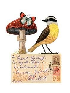Bird No.28 print by Geninne on #Etsy $30
