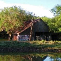 A Texas Rancher Shares Homestead Inspiration – Homesteading and Livestock – MOTHER EARTH NEWS