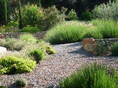 one of my own garden designs www.spgardens.net