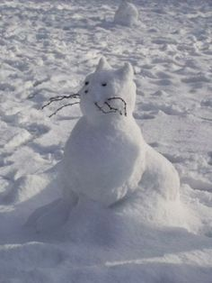 Snow Cat I want to make this with my granddaughter!