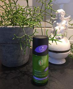 Med sådan en start på dagen kan det ikke gå helt galt! Virksom beskyttelse til sart hud  Alkoholdfri  Aluminiumsfri  Emulgatorfri  Vegansk  Ingen forsøg på dyr  øko lavendel bambus og kokosolie  #webshop #mandag #deodorant #aluminiumsfri #vegansk #naturkosmetik #økologisk #lavendel #bambus #kokosolie #sarthud