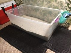 DIY jumbo litter box for big cats. I bought a 110 quart clear storage container for $12 at target and just added litter! The cats jump right in and no more pee on the floor by the litter box. The tall walls keep it all in bc my cat pees standing up. I tried everything and this is the best!