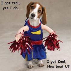 I got Zeal