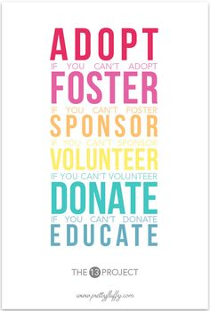 Adopt + Foster + Sponsor + Volunteer + Donate + Educate #The13Project!   To join, all you have to do is come up with a list of up to 13 ways you can help animals before the end of 2013. You don't need to be a millionaire, you don't need to have a website, or be a member of a rescue organisation…All you need is the desire to make a difference. If you're time poor, make your list just one goal – or 3 or 5 things.  Here's how we will get started…please join