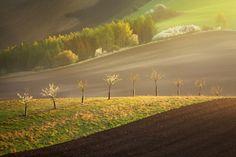 "Line of Moravia fields - <a href=""https://www.instagram.com/danielrerichacz"">INSTAGRAM</a> | <a href=""http://www.danielrericha.cz"">WWW.DANIELRERICHA.CZ</a> | <a href=""http://phototours.cz/"">WWW.PHOTOTOURS.CZ</a> | <a href=""https://www.facebook.com/daniel.rericha.photography/"">FACEBOOK</a>"