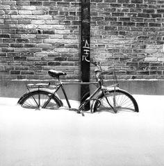 #snowybike #bicycle