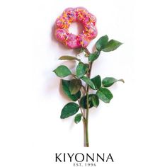 Kiyonna E-Gift Certificate Donut (29,075 KRW) ❤ liked on Polyvore featuring gift cards and plus size