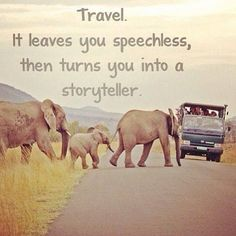 Travel. It leaves you speechless, then turns you into a storyteller. #travel #quotes #elephants #safari