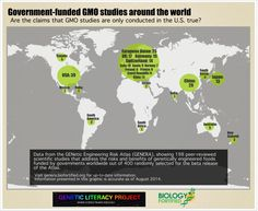 Independent peer-reviewed research on GMOs is common, conducted worldwide, and based on a random sampling makes up half of the total of all research on risks associated with genetic engineering. Learn more at http://www.geneticliteracyproject.org/2014/08/25/glp-infographic-gmo-research-is-all-industry-funded-biofortified-analysis-sets-record-straight/