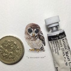 Extraordinary miniature paintings by Lorraine Loots (1/7)