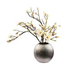 You'll certainly make a bold statement by displaying these magnolias. Standing strong and tall in a fashionable titanium vase, these magnolias are sized to delight, with their fluffy blooms resting atop a bed of branches.
