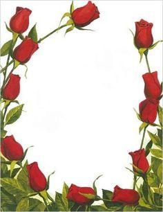 květiny, růže