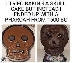 Baking Fails, Worst Cooks, Dark And Twisted, Funny As Hell, Animal Jokes, Morning Humor, Twisted Humor, Life Humor, Dia De