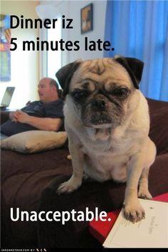 Dinner iz 5 minutes late