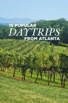 15 Best Day Trips from Atlanta Georgia // localadventurer.com
