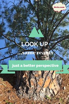 When things get difficult, realize that you always have a choice in your perspective. Think about this tree. The view looking up a tree is way prettier than the view looking down at the ground. Same tree, just a better perspective. Invite motivational health speaker, Dr. Jo to your next event!
