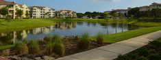 Palm Coast Landscaping and Lawn Care by GreenFlex Landscaping Lake Landscaping, Commercial Landscaping, Ormond Beach, Palm Coast, Lawn Maintenance, Landscape Lighting, Lawn Care, Irrigation, Water Features