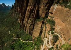 Cliffs plants utah national park zion trails (1600x1127, plants, utah, national, park, zion, trails)  via www.allwallpaper.in