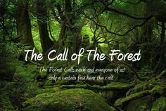 The call of the forest...