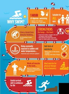 Why Swim? infographic - Learn more about Phil Newsum and his swimming mastery go. - swimming is life - Swimming Diving, Swimming Tips, Keep Swimming, Swimming Motivation, Swimming Benefits, Competitive Swimming, Diabetes Treatment Guidelines, Swim Team, Nutrition