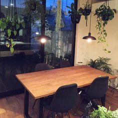 tongariさんの、キッチン,観葉植物,グリーン,DIY,モノトーン,ウォールナット,マスターウォール,広松木工,マットブラック,イームズチェア,グリーンのある暮らし,エジソンランプ,のお部屋写真