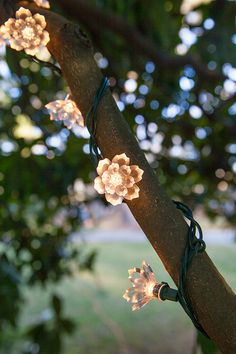 I want to decorate everything with these flower lights! Wrap decorative string lights around branches, illuminate garden bushes or hang a strand around a mirror to create cozy bedroom lights!